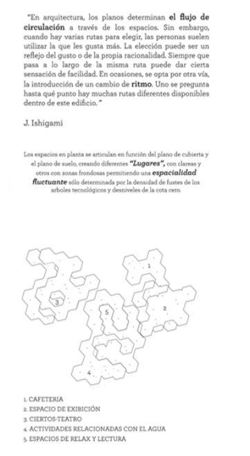 SERGIO PERERA CONCEPCION_DIVERSITREE_IMPLANTACIÓN