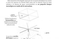 SERGIO PERERA CONCEPCION_DIVERSITREE_DETALLE